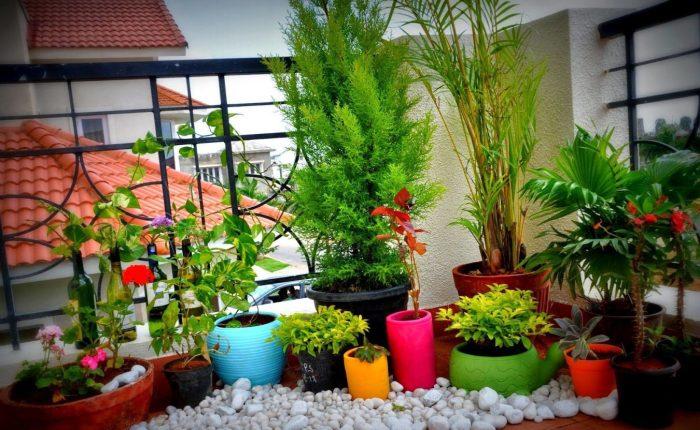 балкон5.jpg