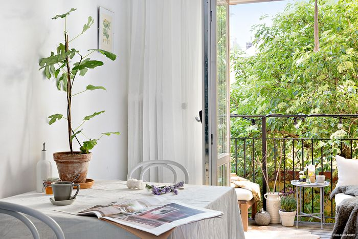 withe-small-interior-1.jpg