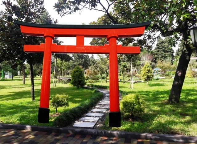 In Batumi, the Japanese garden will flourish.jpg